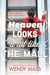Télécharger le livre :  Heaven Looks a Lot Like the Mall
