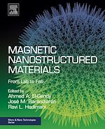 Download this eBook Magnetic Nanostructured Materials