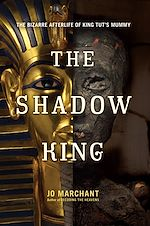 Téléchargez le livre :  The Shadow King