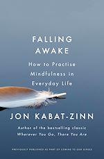 Download this eBook Falling Awake