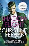 Télécharger le livre :  Shadow Flight