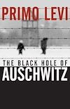 Download this eBook The Black Hole of Auschwitz