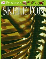 Téléchargez le livre :  Eyewitness GUides: Skeleton