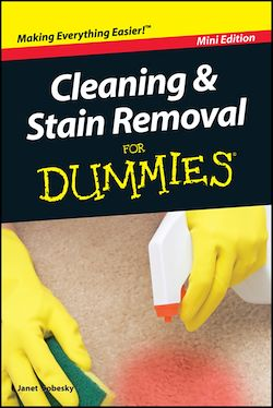 Cleaning and Stain Removal For Dummies, Mini Edition