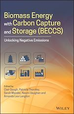 Download this eBook Biomass Energy with Carbon Capture and Storage (BECCS)