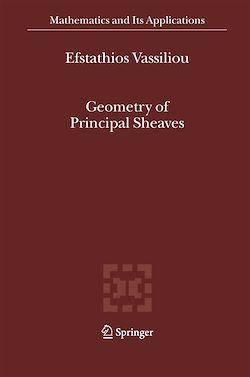 Geometry of Principal Sheaves
