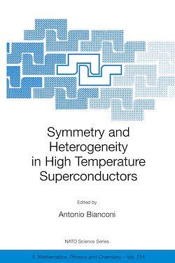 Symmetry and Heterogeneity in High Temperature Superconductors
