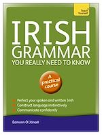 Download this eBook Irish Grammar You Really Need to Know: Teach Yourself