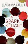 Télécharger le livre :  A Spark of Light