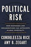Télécharger le livre :  Political Risk