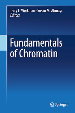 Fundamentals of Chromatin