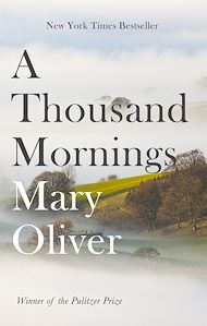 Download the eBook: A Thousand Mornings