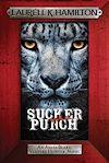 Télécharger le livre :  Sucker Punch