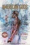 Télécharger le livre :  American Gods: My Ainsel