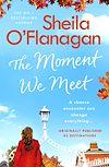 Télécharger le livre :  The Moment We Meet