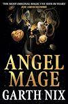 Télécharger le livre :  Angel Mage
