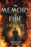 Download this eBook The Memory of Fire