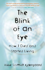 Download the eBook: The Blink of an Eye