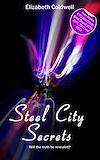 Télécharger le livre :  Steel City Secrets