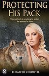 Télécharger le livre :  Protecting His Pack