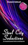 Télécharger le livre :  Steel City Seductions