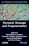 Télécharger le livre :  Dynamic Damage and Fragmentation