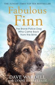 Download the eBook: Fabulous Finn