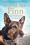 Download this eBook Fabulous Finn
