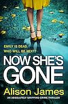 Download this eBook Now She's Gone