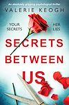 Download this eBook Secrets Between Us