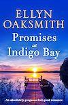 Télécharger le livre :  Promises at Indigo Bay