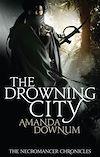 Télécharger le livre :  The Drowning City