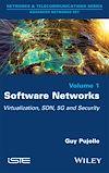 Télécharger le livre :  Software Networks