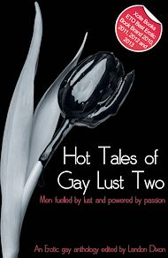 Téléchargez le livre :  Hot Tales of Gay Lust Two