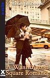 Télécharger le livre :  A Washington Square Romance