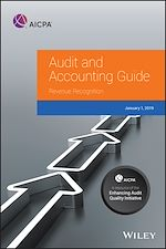 Download this eBook Audit and Accounting Guide