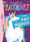 Télécharger le livre :  Le monde des licornes - Aventures sur mesure XXL