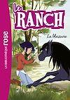 Télécharger le livre :  Le Ranch 32 - La blessure