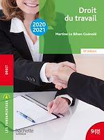 Download this eBook Les Fondamentaux Droit du travail 2020-2021