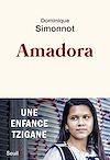 Télécharger le livre :  Amadora - Une enfance tzigane