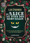 Télécharger le livre :  Les enigmes d'Alice au pays des merveilles