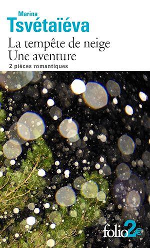 Téléchargez le livre :  La tempête de neige – Une aventure