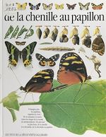 Download this eBook De la chenille au papillon