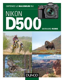 Download the eBook: Obtenez le maximum du Nikon D500