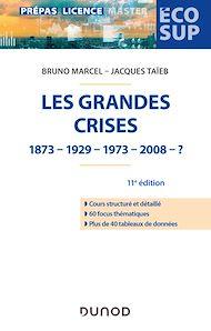 Téléchargez le livre :  Les grandes crises - 11e éd.