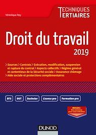 Téléchargez le livre :  Droit du travail 2019