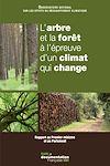 L'arbre et la forêt à l'épreuve d'un climat qui change