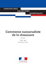 Download this eBook Commerce succursaliste de la chaussure