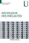 Télécharger le livre :  Sociologie des inégalités