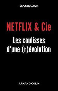 Téléchargez le livre :  Netflix & Cie